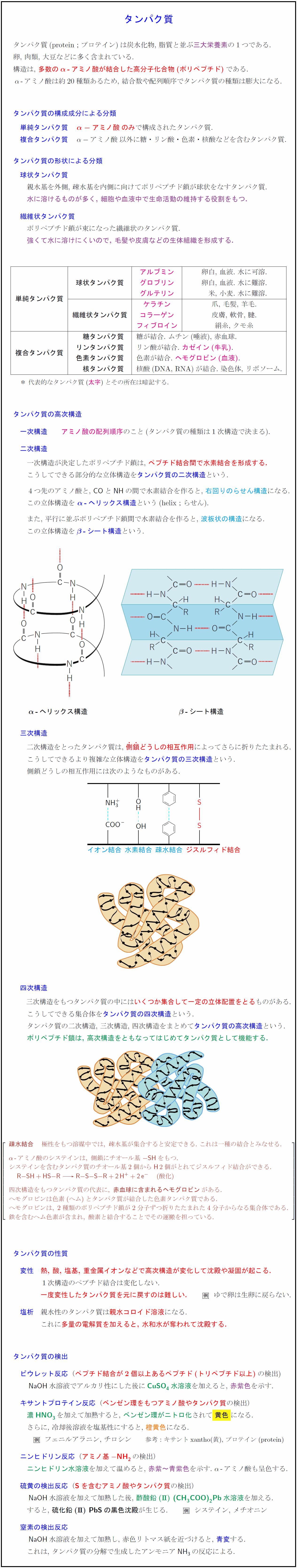 protein@2x