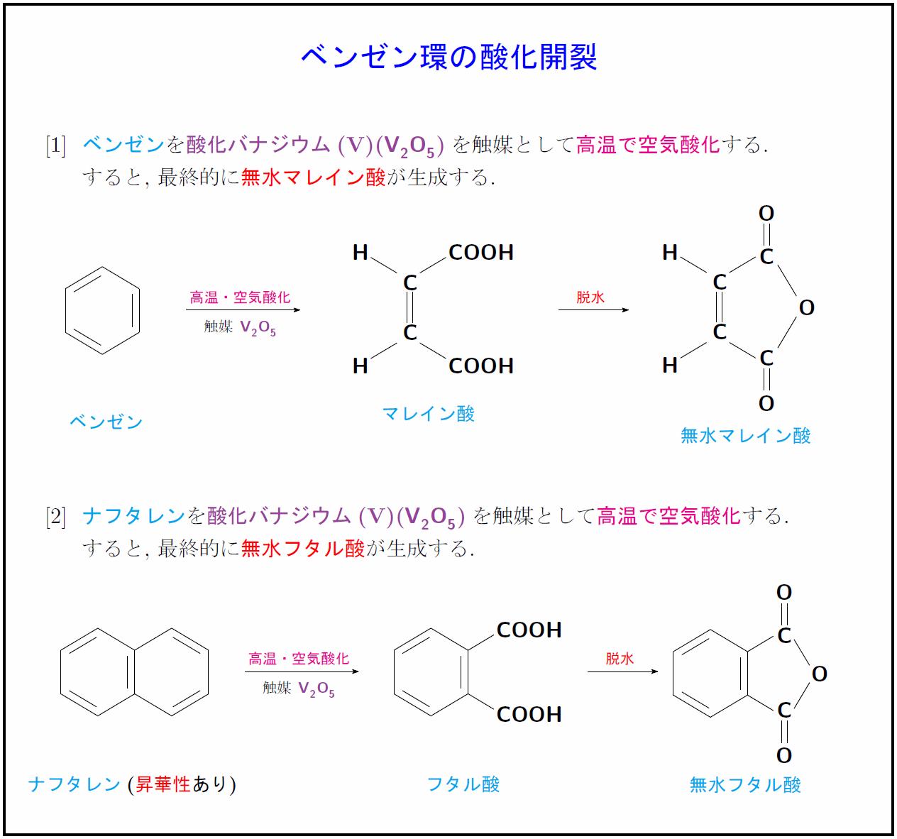 oxidative-fission